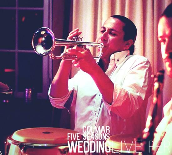 five seasons est un groupe de musique spécialisé dans l'animation de mariage en France et en Suisse .Live performers,artistes,musiciens accompagné d'un DJ
